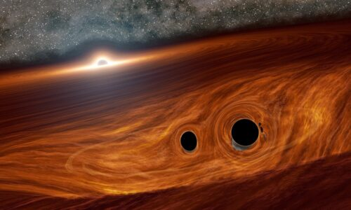 Different Types of Black Holes